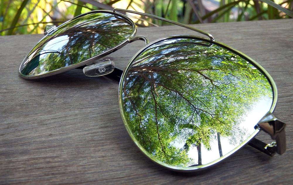 Trädkronor som reflekteras i ett par solglasögon